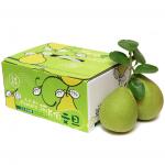 文旦-特級5斤禮盒(8小果)